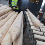 LONZA GAINS GROWN IN BRITAIN PROMOTIONAL LICENCE