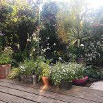 Up the garden path…