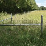 OUT WITH THE OLD, IN WITH THE NEW GENERATION OF HAMPTON FENCING SYSTEMS FOR HARTING DOWN, NATIONAL TRUST