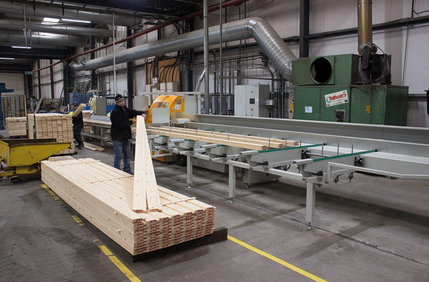 ARBOR FOREST PRODUCTS CHOOSE SALVADOR