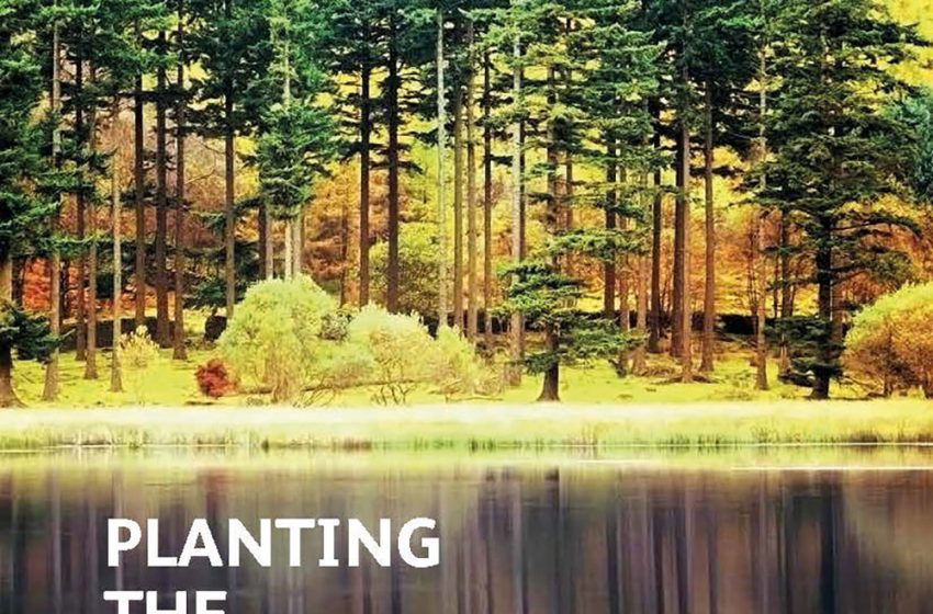New Forestry Bill must build on £1 billion success story