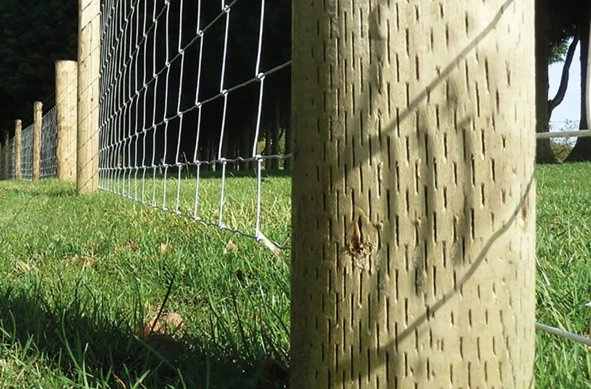 AGRICISED® – LONG LIFE FENCING POSTS AND STRAINERS