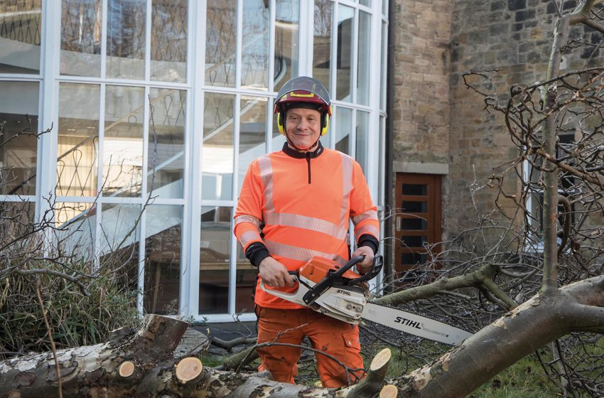 FROM SMALL ACORNS FOR NORTH EAST TREE SURGEONS