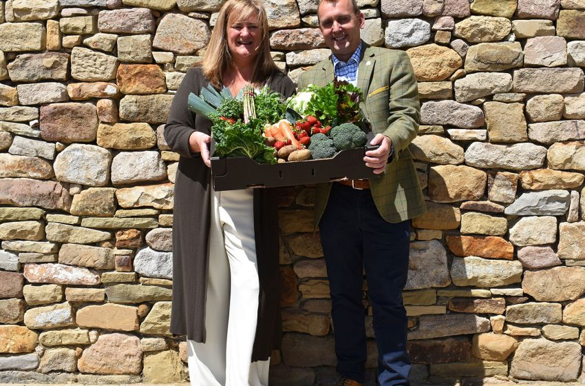 THE FARM RETAIL ASSOCIATION APPOINTS YAS AS NEW MANAGEMENT TEAM