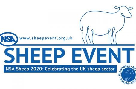 NSA Sheep Event 2020 – update