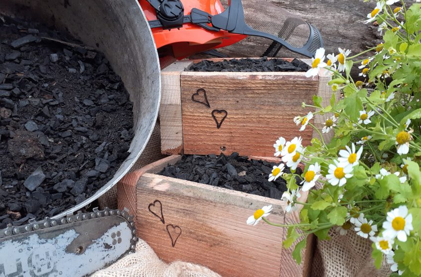 SAY IT WITH WOOD BIOCHAR EVENT