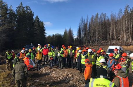 DOUBLING OF GRADUATES FOR TILHILL FORESTRY SCHEME