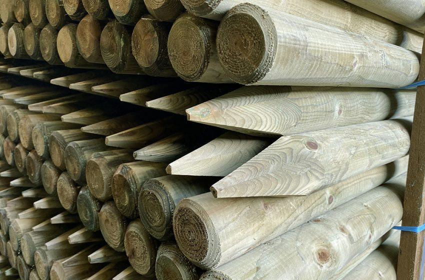 ELLPRO TIMBER LAUNCH NEW WEBSITE