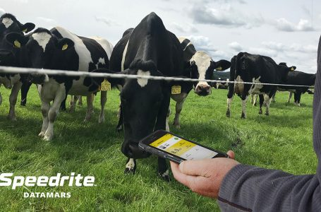 DATAMARS LIVESTOCK LAUNCHES 'SMART' 46 JOULE ENERGIZER