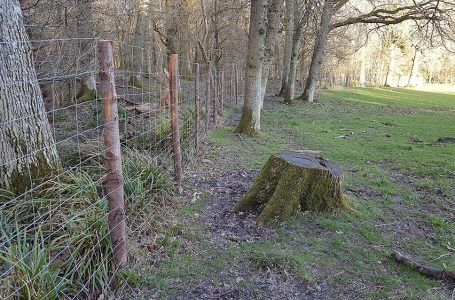 HAMPTON'S DONATION OF DEER FENCING TO 'WILDLIFE FOR ALL' CHARITY