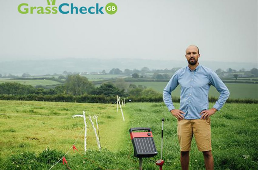 USING ELECTRIC FENCING TO OUT WINTER LIVESTOCK ON GRASS AND OTHER FORAGE CROPS