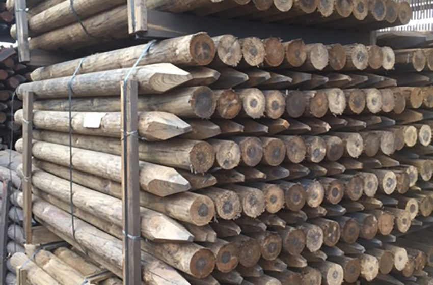 FROM ROYALS TO RAILWAY SLEEPERS, C&G HAVE IT COVERED