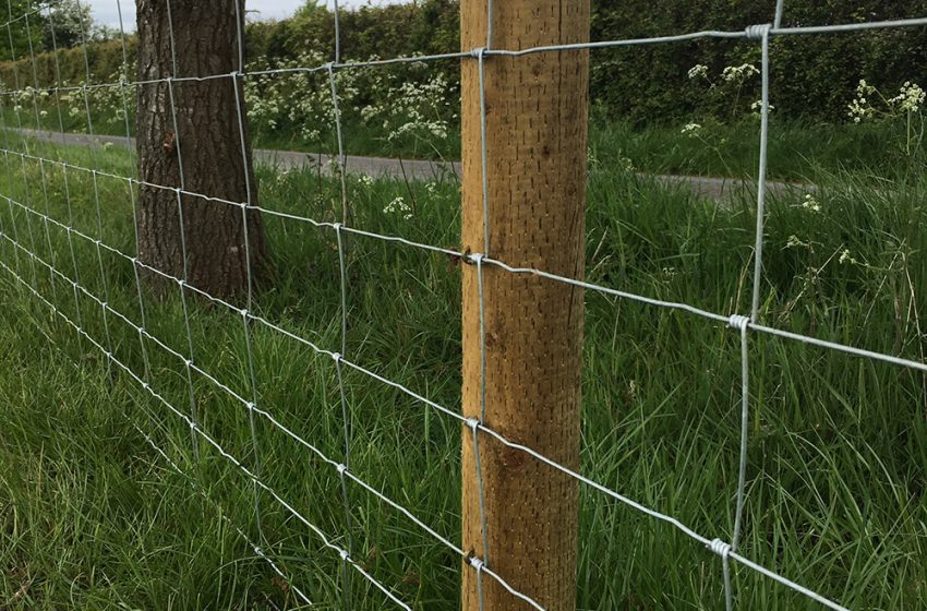 AGRICISED® – HIGH-PERFORMANCE FENCING POSTS AND STRAINERS