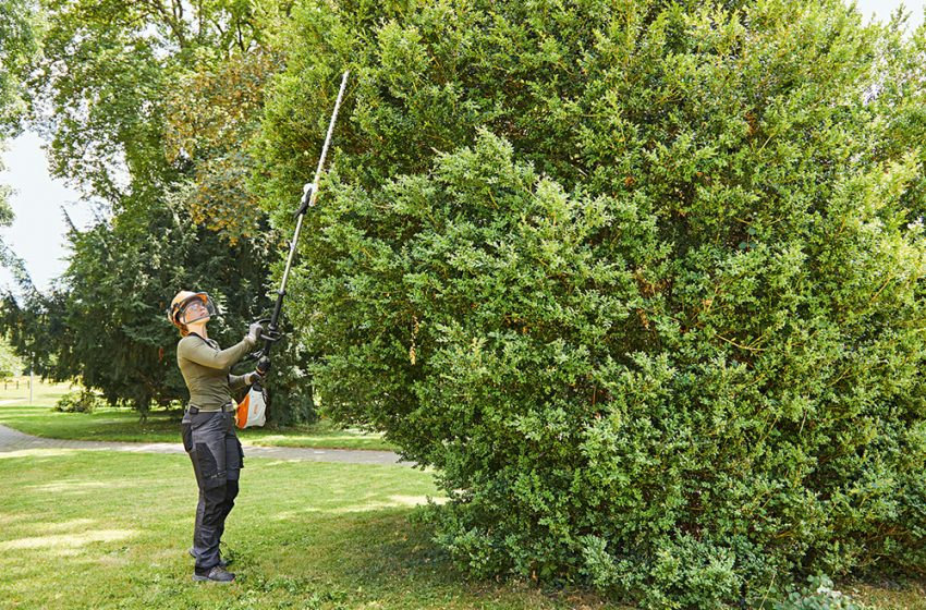 STIHL EXTEND PRUNING AND HEDGE TRIMMING RANGES